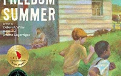 diversity and my books, part 1, freedom summer
