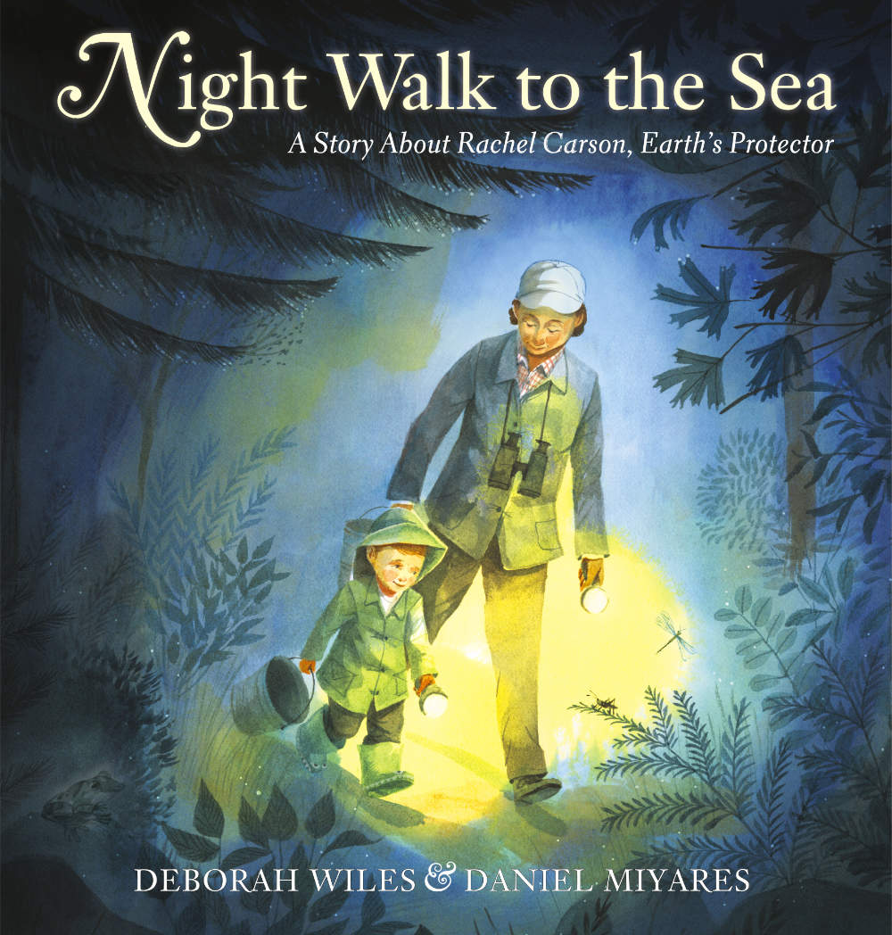 A Long Walk to the Sea by Deborah Wiles